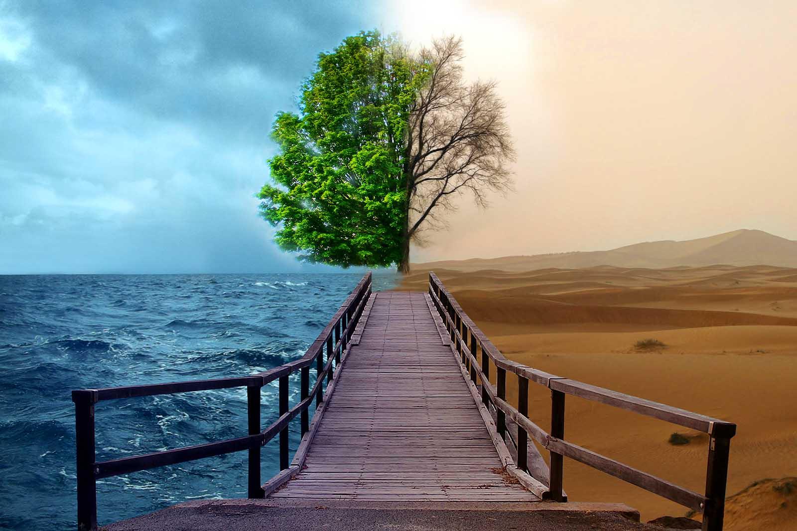 حفظ محیط زیست و تامین بهداشت شهروندان